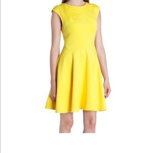 Ted Baker Bright Yellow Dress!